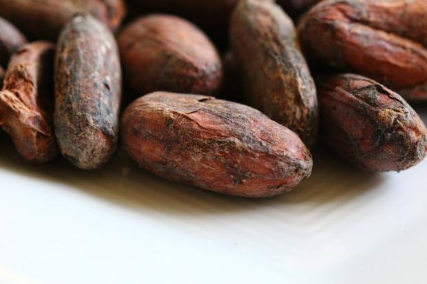 cocoabean