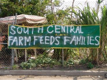 South_Central_Farm_2.jpg